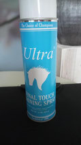 Ultra Final Touch Shining Spray