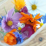 Eetbare bloemen - mix