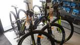 """E-Bike-Verleih mit 27,5""""+29"""" Bikes-HT"""