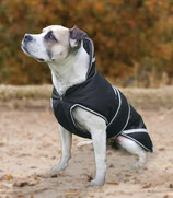 Hundedecke Protection