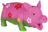 Blumenschweinchen