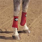 Equine Boots - PRO H35 Equine Splint Wrap