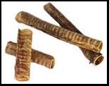 Elk Windee (trachea)