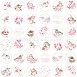 Designpapier *Kirschblüten Kreise*