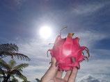 ドラゴンフルーツ(赤)