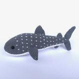 Wahlhai (Whale Shark)