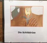 Die Schilddrüse - Doro Küchler
