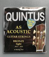 Quintus Westerngitarrensaiten 1