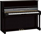 Yamaha Upright Piano SU118