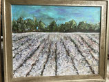 SOLD!  DELTA COTTON Painting- Original 16x20