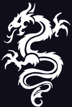 Drachen Aufkleber 5
