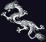 Drachen Aufkleber 7
