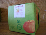Apfelsaft naturtrüb 5l Bag in Box aktuell nicht als Versand lieferbar