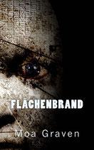 FLÄCHENBRAND - Der fünfte Fall für Jan Krömer
