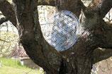 Glasscheibe - Blume des Lebens