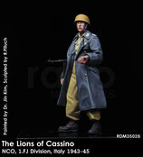 RDM35026 Lions of Cassino