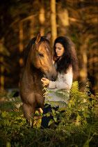 Pferdepersönlichkeitstraining