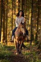 Horsemanship I - Der Weg zu Deinem Pferd GOLD EDITION