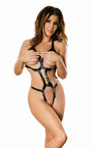 50-5399 Leder Harness