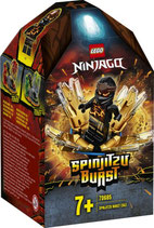 LEGO NINJAGO Coles Spinjitzu-Kreisel