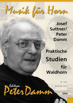 Josef Suttner: Praktische Studien