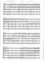 Tomaso Albinoni: Concerto for two trumpets op. 7 No. 5