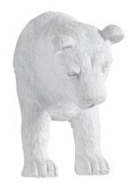Poignée Meuble Tigre