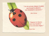 "Carte ""Chance - Coccinelle - Citations"""
