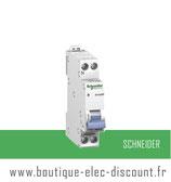 Disjoncteur 2A avec vis Réf 20724 Schneider