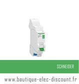 Disjoncteur 10A ss vis réf R9EFC610 Schneider