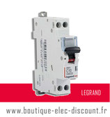 Disjoncteur LEGRAND 10A à vis Réf 406773