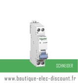 Disjoncteur 10A avec vis Réf 20725 Schneider