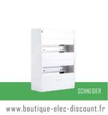 Coffret RESI9 13M 2R Réf R9H13402 Schneider