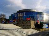 Bonn en de zee – Boot Tour naar Königswinter + bezoek aan het Sealife Aquarium