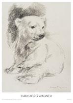 junger Eisbär, sich wendend - II - KUNSTPOSTER DIN A2