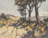 Weg bei Lorenzana - FINE ART PRINT EDITION - 80 x 64 cm