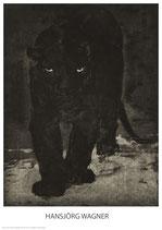 Panther von vorn - KUNSTPOSTER DIN A1