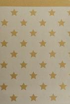 Packpapierbeutel mit Sternen in 3 verschiedenen Grössen