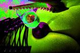 Farbenspiel mit Sektglas