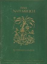 Die Blütenpflanzen 1921