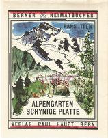 Alpengarten Schynige Platte 1955