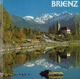 Brienz Heimatbuch 1989