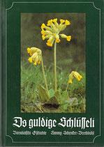 Hanny Schenker-Brechbühl - Ds guldige Schlüsseli