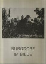 Burgdorf im Bilde