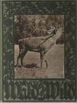 Wald und Wild 1928