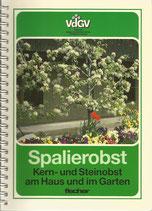 Spalierobst