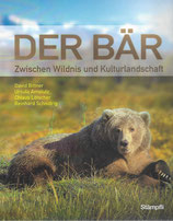 Der Bär – Zwischen Wildnis und Kulturlandschaft