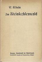 Im Steinkohlenwald 1918