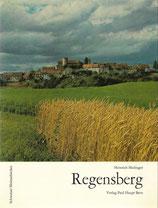 Geschichte des Städtchens Regensberg