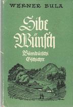 Sibe Wünsch - Bärnddütschi Gschichte